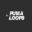 Puma Loops